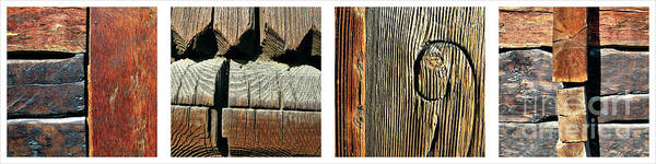 Photograph - Old Wood Texture  by Daliana Pacuraru