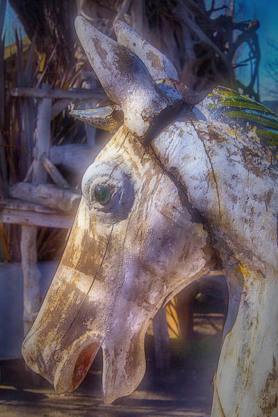 Photograph - Old Wooden Horse Head by Garry Gay