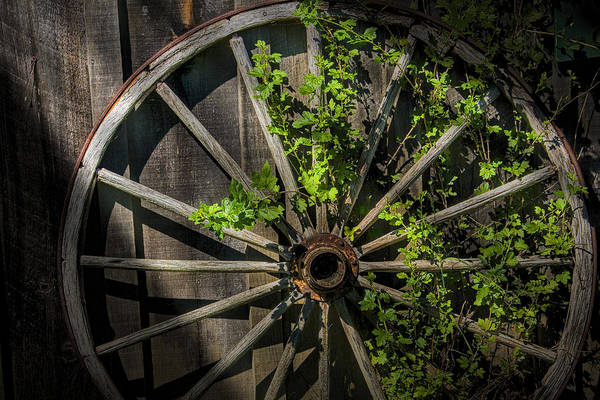 Photograph - Old Wooden Wagon Wheel by Randall Nyhof