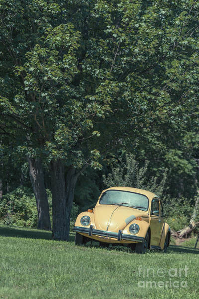 Wall Art - Photograph - Old Yellow Vw Bug Under A Tree by Edward Fielding