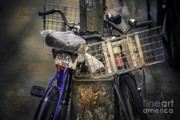 Photograph - Olive And Friend Bicycles by Craig J Satterlee