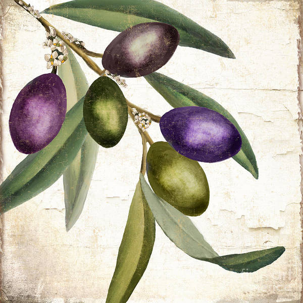 Wall Art - Painting - Olive Branch IIi by Mindy Sommers
