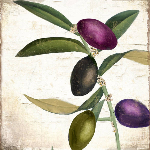 Oil Paints Painting - Olive Branch Iv by Mindy Sommers