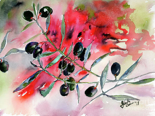 Painting - Olive Branch Watercolor by Ginette Callaway