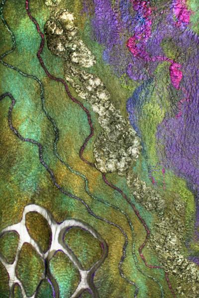 Photograph - Olive Garden And Lavender Fields by Marina Shkolnik