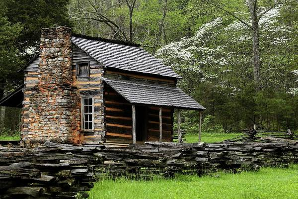 John Oliver Cabin Photograph - Oliver's Cabin Among The Dogwood Of The Great Smoky Mountains National Park II by Carol Montoya