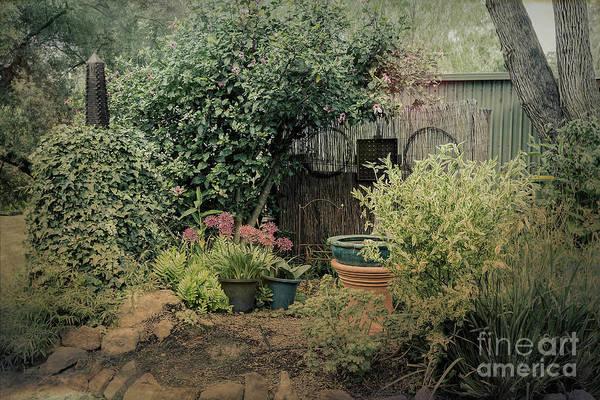 Photograph - Olde World by Elaine Teague