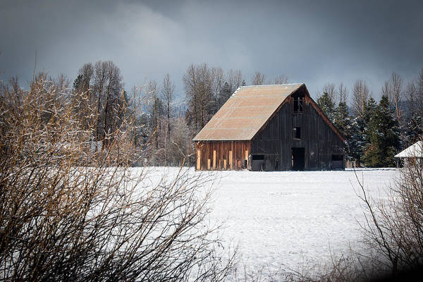 Photograph - Olsen Barn In Snow by Jan Davies