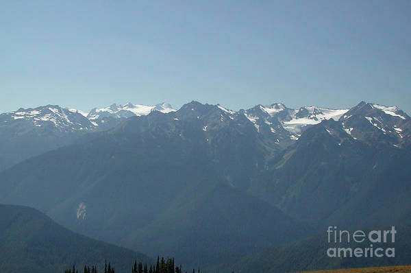 Photograph - Olympics From Hurricane Ridge by Kathi Shotwell