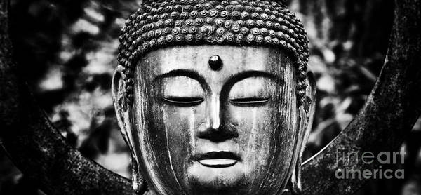 Buddhism Photograph - Om Shanti by Tim Gainey