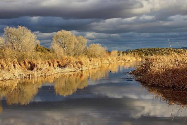 Photograph - Ominous Reflections by Leda Robertson