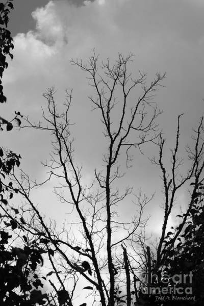 Photograph - Ominous by Todd Blanchard