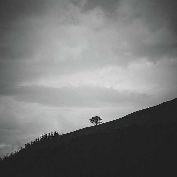 Lake District Wall Art - Photograph - On A Slope by Chris Dale