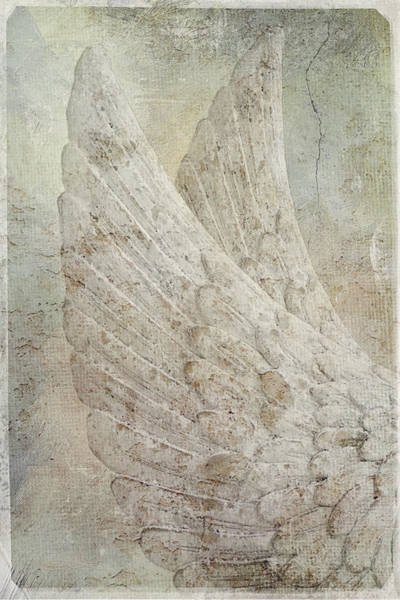 Photograph - On Angels Wings 2 by Jill Love