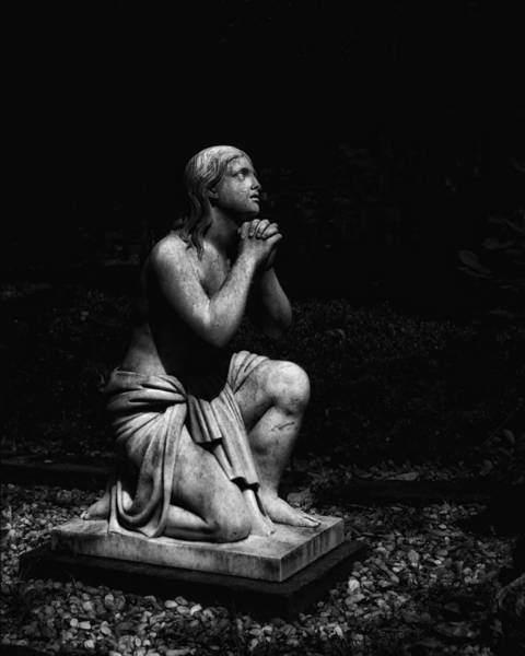 Laurel Grove Cemetery Photograph - On Bended Knee by Amy Holley