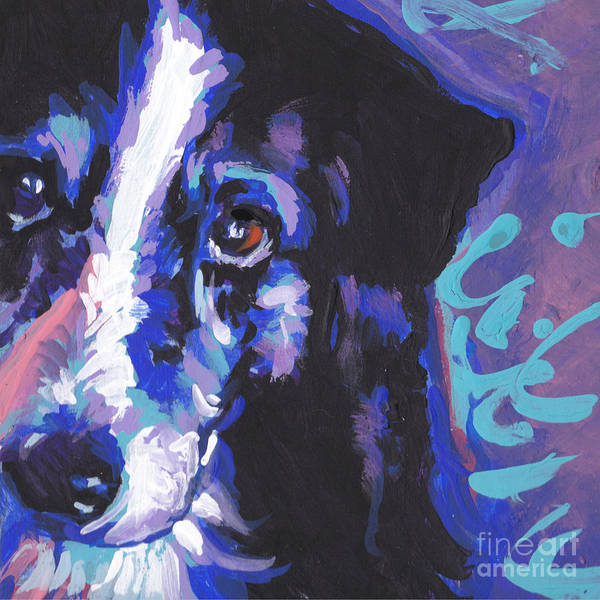 Border Collie Painting - On Border by Lea S