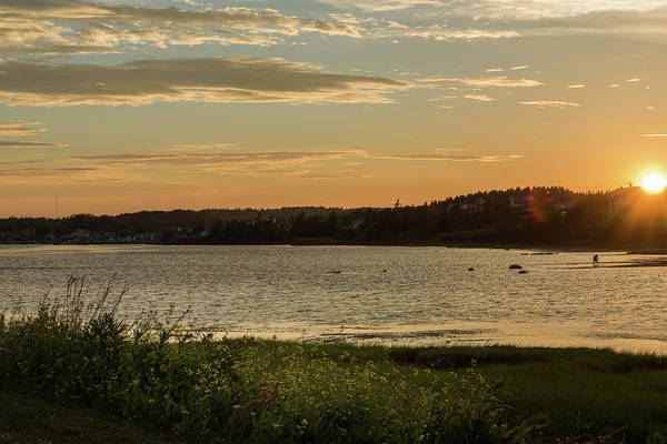 Photograph - On North Rustico Harbour by Chris Bordeleau