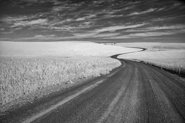 Photograph - On The Back Road by Jon Glaser