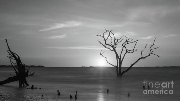 Wall Art - Photograph - On The Horizon Bw  by Michael Ver Sprill