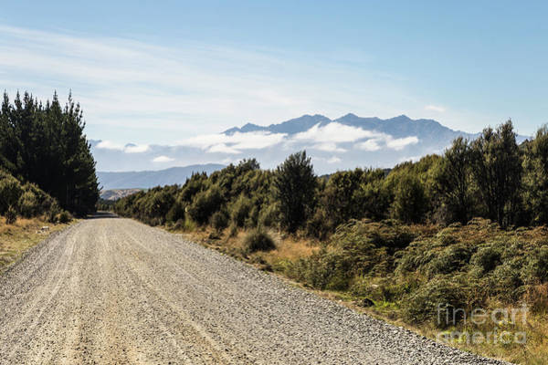 Photograph - On The Road In New Zealand South Island Near Lake Monowai by Didier Marti
