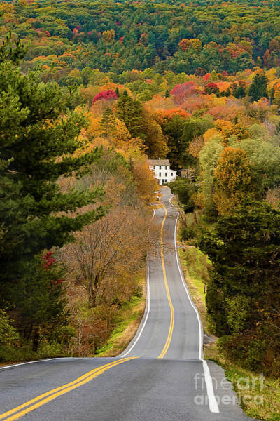 Photograph - On The Road To New Paltz by Alissa Beth Photography