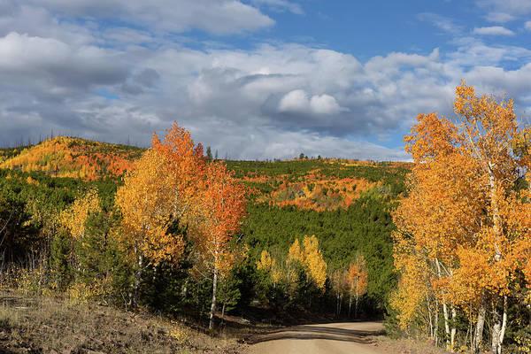Bishop Hill Photograph - On The Road To Spirit Lake by Kathleen Bishop