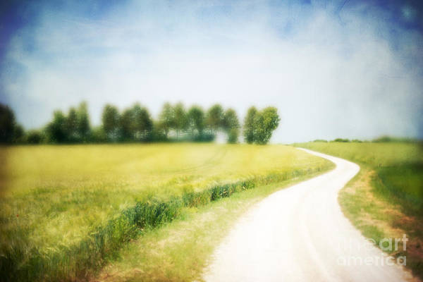 Photograph - On The Way Through The Summer by Hannes Cmarits