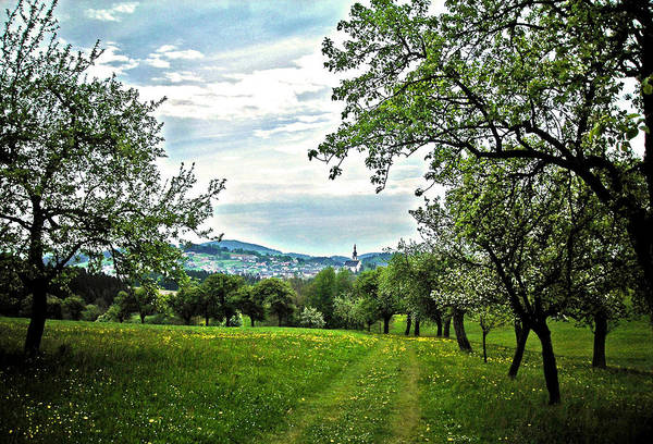 Photograph - On The Way To Gramastetten ... by Juergen Weiss