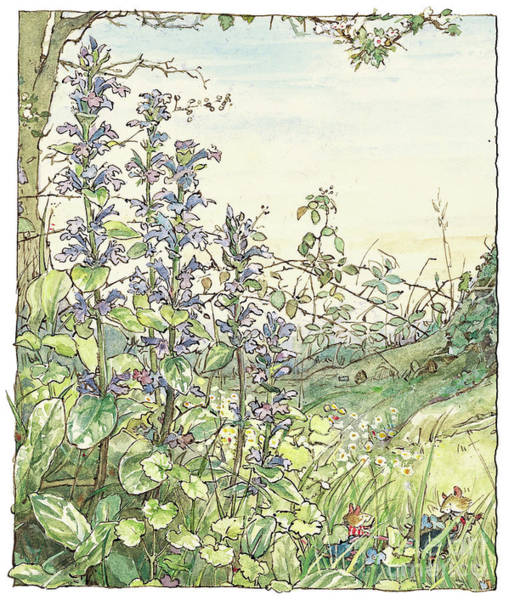 Wall Art - Drawing - On The Way To The Store Stump by Brambly Hedge