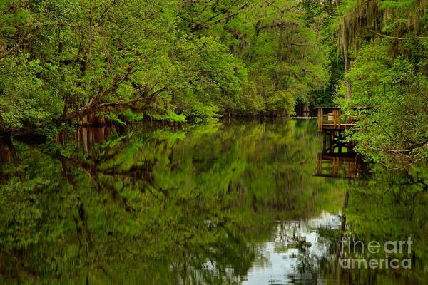 Photograph - On The Way To The Suwannee River by Adam Jewell