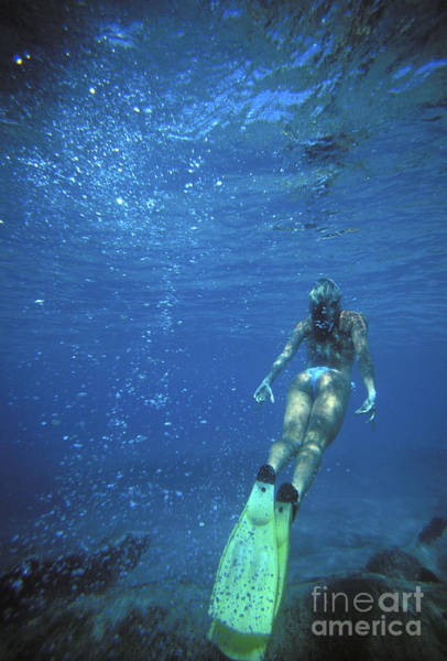 Free Dive Wall Art - Photograph - On Vacation by Vince Cavataio - Printscapes