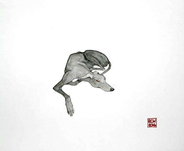 Sighthound Wall Art - Painting - On Watch by Richard Williamson