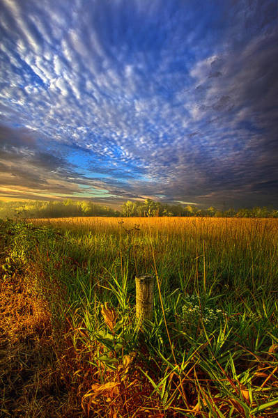 Photograph - On Your Way Back Home by Phil Koch