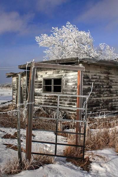 Photograph - Once A Home by David Matthews