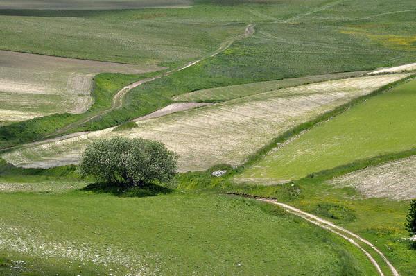 Photograph - Parko Nazionale Dei Monti Sibillini, Italy 8 by Dubi Roman