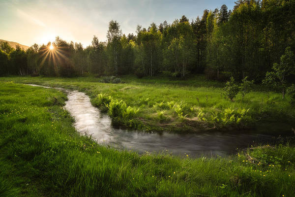 Green Grass Photograph - One Day Of Summer by Tor-Ivar Naess