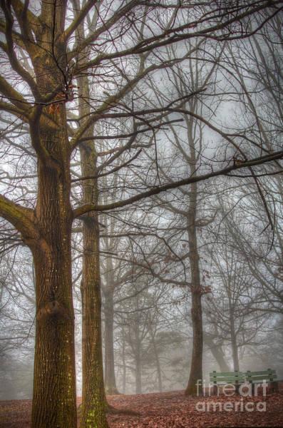 Park Bench Digital Art - One Foggy Day by Dan Stone
