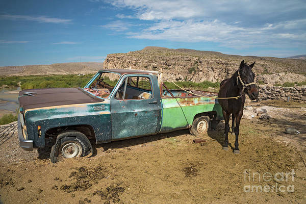 Photograph - One Horsepower by Jim West