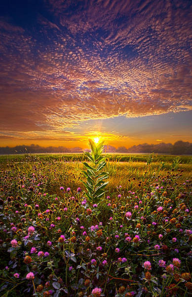 Photograph - One Last Kiss by Phil Koch