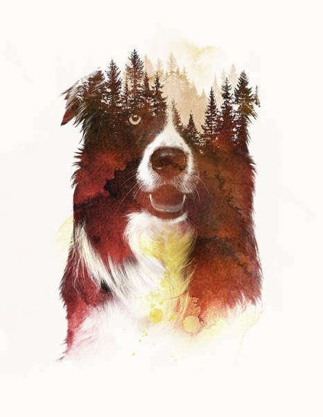 Border Mixed Media - One Night In The Forest by Robert Farkas