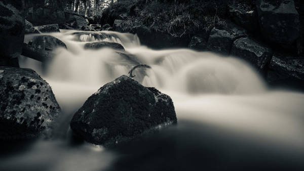 Photograph - one of these little streams in the Harz by Andreas Levi