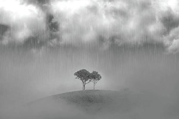 Pouring Photograph - One Of Those Days by Az Jackson