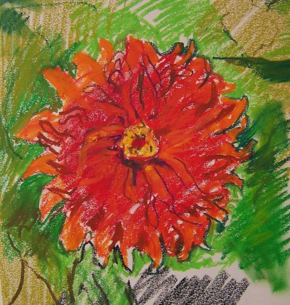 Spontaneous Drawing - One Red Flower Of A Summer's Day by Aletha Kuschan
