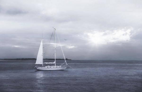 Photograph - One Sail by Robin-Lee Vieira