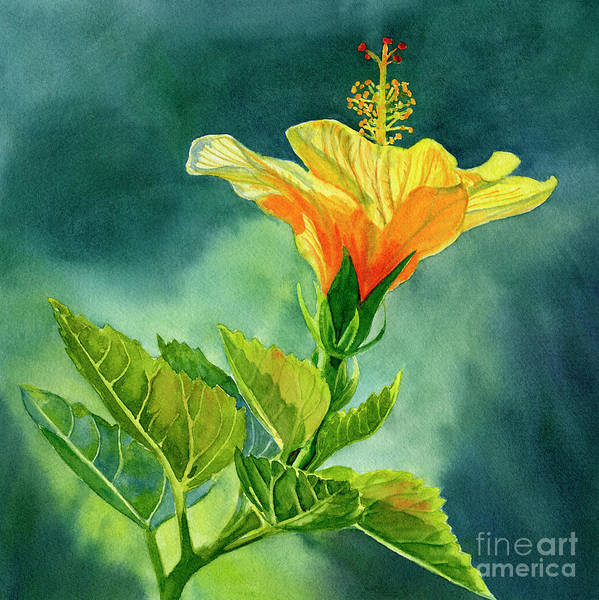 Wall Art - Painting - One Yellow Orange Hibiscus With Background by Sharon Freeman