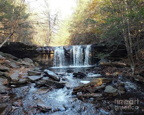 Sullivan County Photograph - Oneida Falls 2 - Ricketts Glen by Cindy Treger