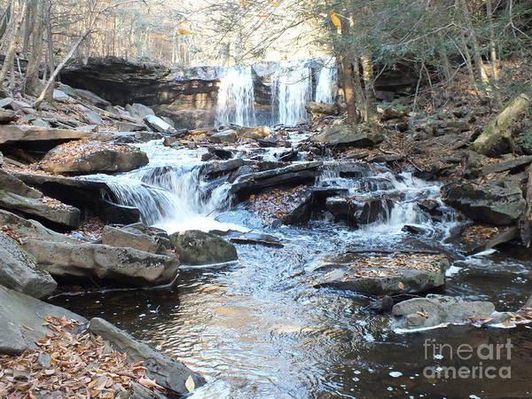 Sullivan County Photograph - Oneida Falls 3 - Ricketts Glen by Cindy Treger