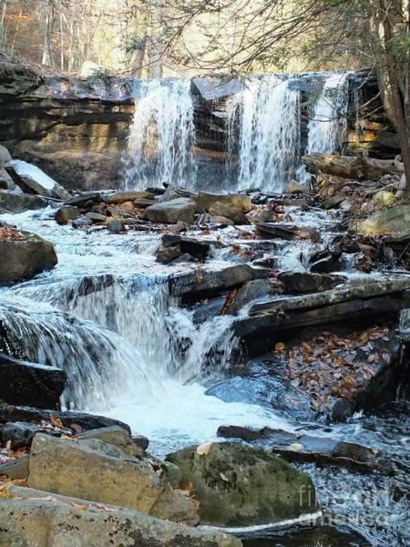 Sullivan County Photograph - Oneida Falls 4 - Ricketts Glen by Cindy Treger