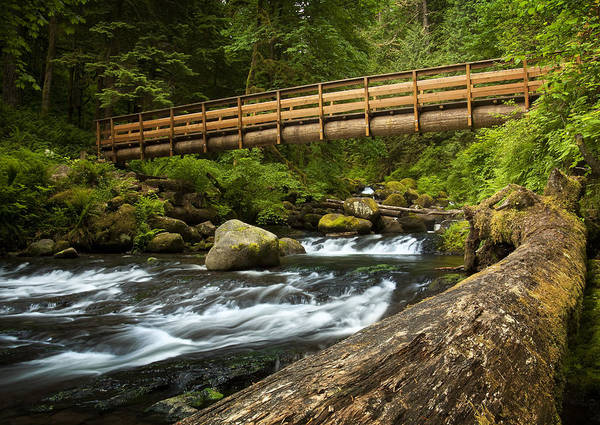 Photograph - Oneonta Creek Crossing by Jon Ares