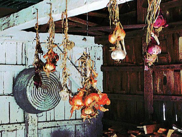 Photograph - Onions by Susan Savad